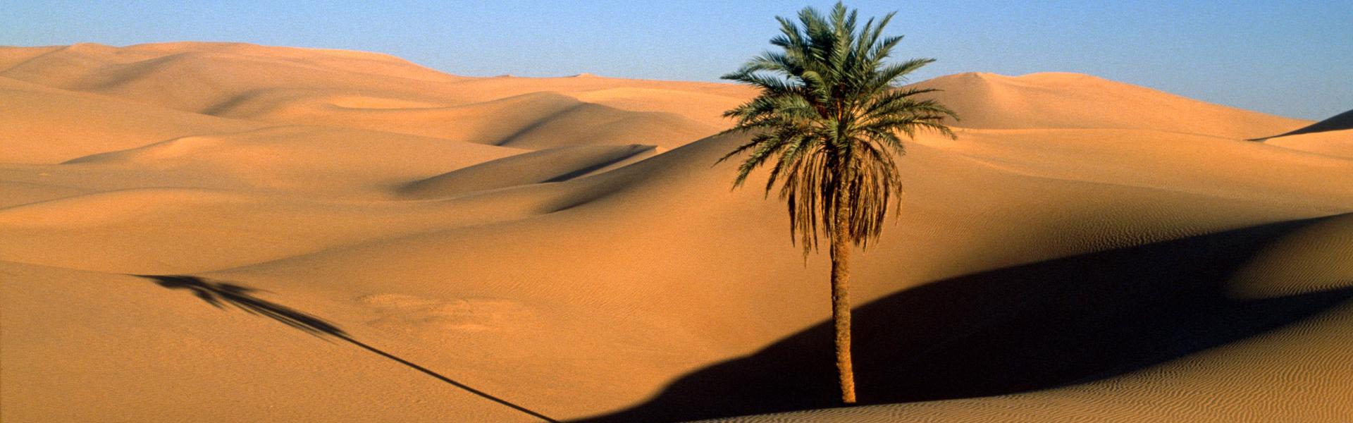 slider-desert